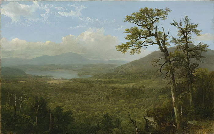 Adirondack Mountains, NY, 1870 door Asher Brown Durand