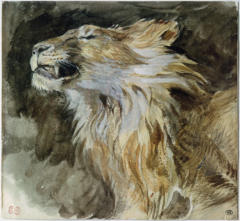 The Head of a Lion (waterverf op papier) door Ferdinand Victor Eugene Delacroix