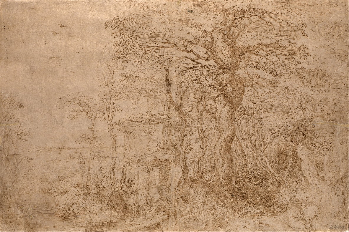 Sylvan-landschap met vijf beren door Pieter Bruegel the Elder